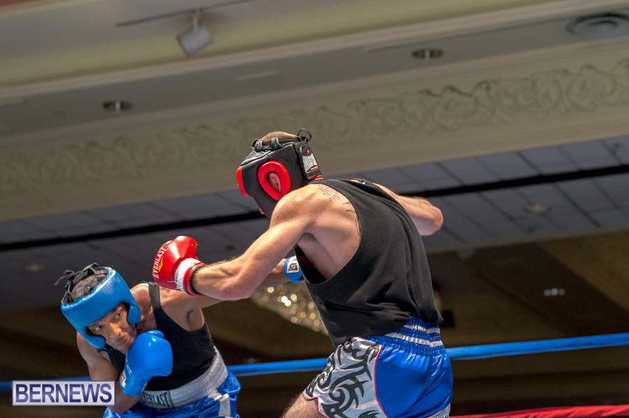 Bermuda-Boxing-JM-Nov-2015-42