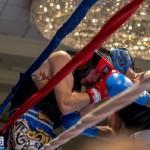 Bermuda Boxing JM Nov 2015 (45)