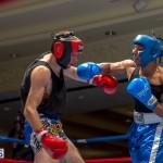 Bermuda Boxing JM Nov 2015 (46)