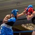 Bermuda Boxing JM Nov 2015 (47)