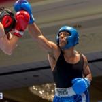 Bermuda Boxing JM Nov 2015 (48)