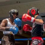 Bermuda Boxing JM Nov 2015 (52)