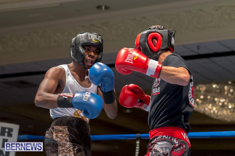Bermuda-Boxing-JM-Nov-2015-52