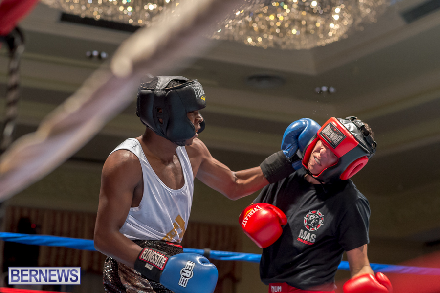 Bermuda-Boxing-JM-Nov-2015-56