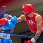 Bermuda Boxing JM Nov 2015 (6)