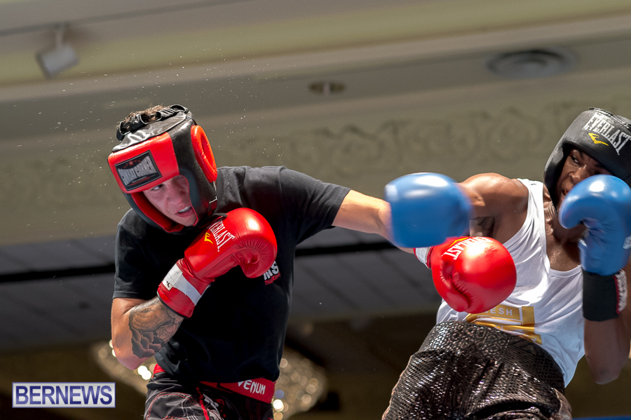 Bermuda-Boxing-JM-Nov-2015-60
