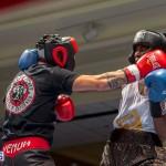 Bermuda Boxing JM Nov 2015 (62)