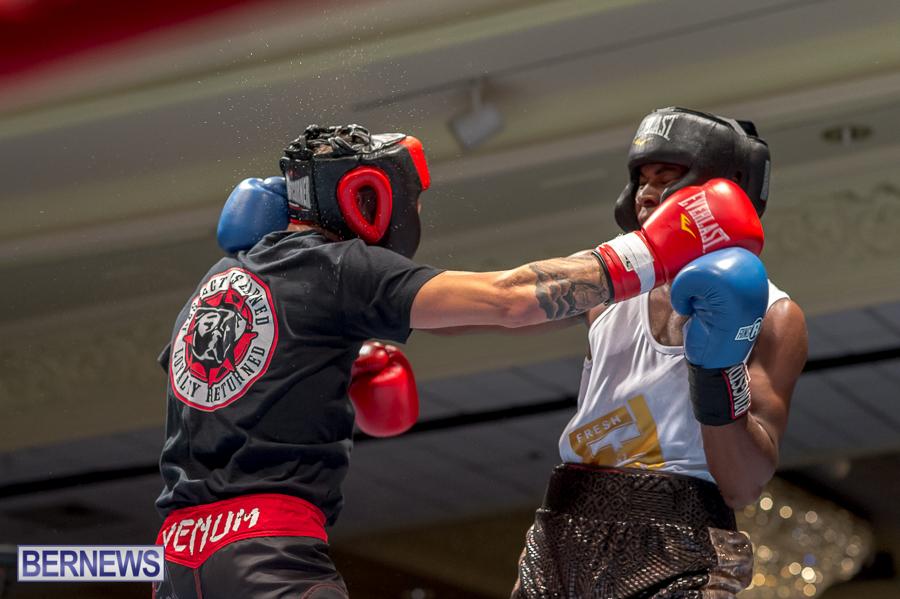 Bermuda-Boxing-JM-Nov-2015-62