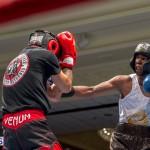Bermuda Boxing JM Nov 2015 (63)