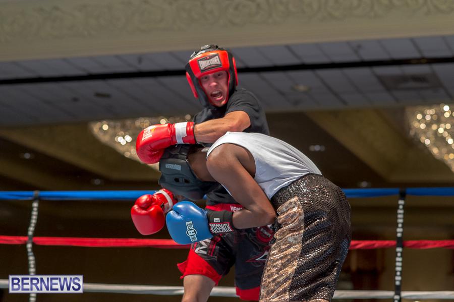 Bermuda-Boxing-JM-Nov-2015-64