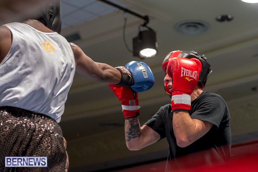 Bermuda-Boxing-JM-Nov-2015-65