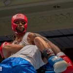 Bermuda Boxing JM Nov 2015 (68)