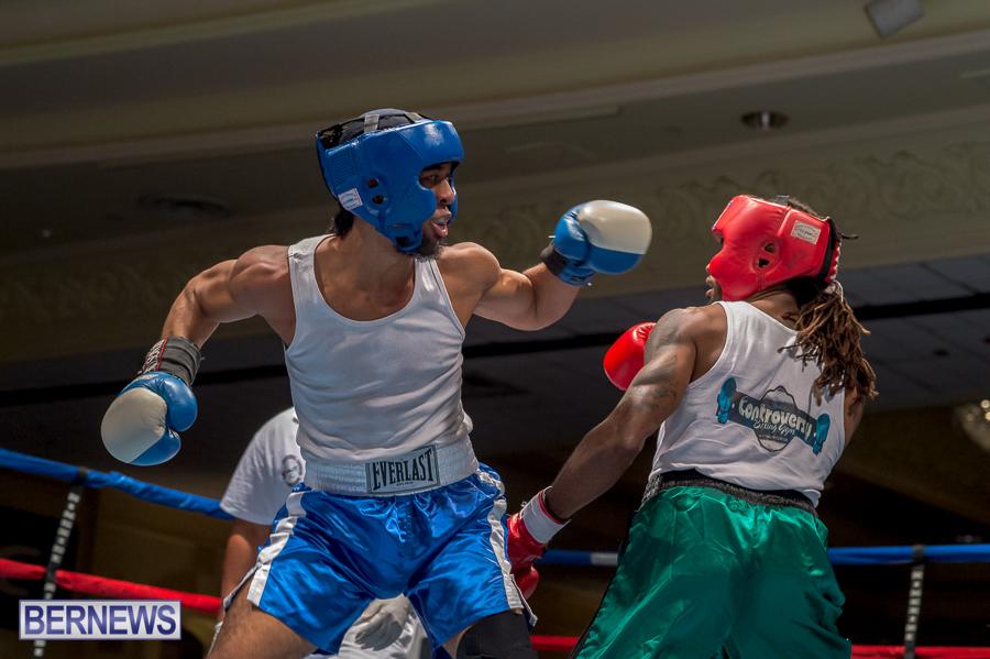 Bermuda-Boxing-JM-Nov-2015-69