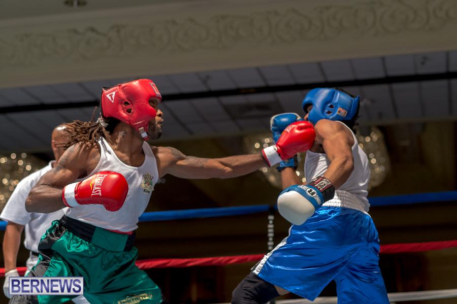 Bermuda-Boxing-JM-Nov-2015-72