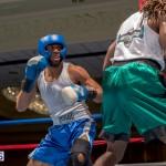 Bermuda Boxing JM Nov 2015 (73)