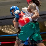 Bermuda Boxing JM Nov 2015 (74)