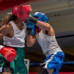 Bermuda Boxing JM Nov 2015 (76)