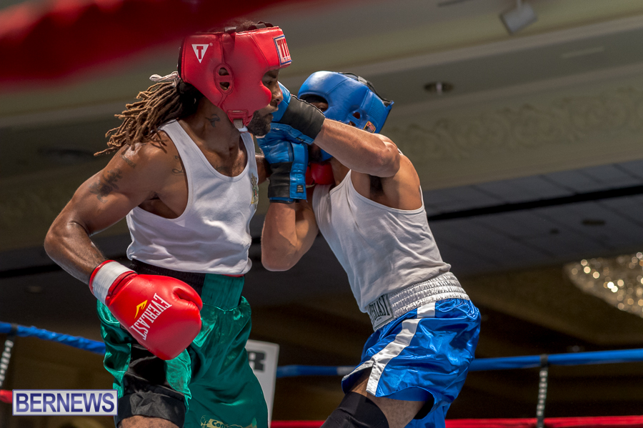 Bermuda-Boxing-JM-Nov-2015-76