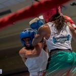 Bermuda Boxing JM Nov 2015 (78)