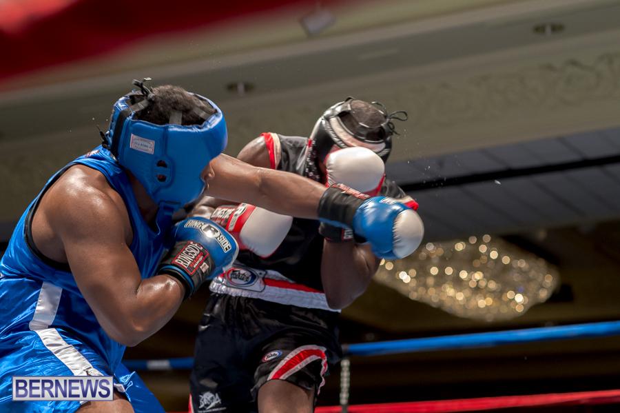 Bermuda-Boxing-JM-Nov-2015-79