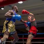 Bermuda Boxing JM Nov 2015 (87)