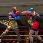 Bermuda Boxing JM Nov 2015 (91)