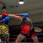 Bermuda Boxing JM Nov 2015 (96)