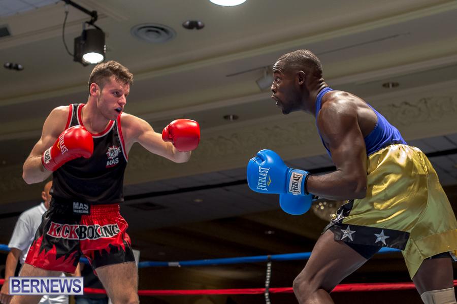 Bermuda-Boxing-JM-Nov-2015-99
