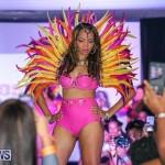 Bermuda Heroes Weekend Launch, November 20 2015-21