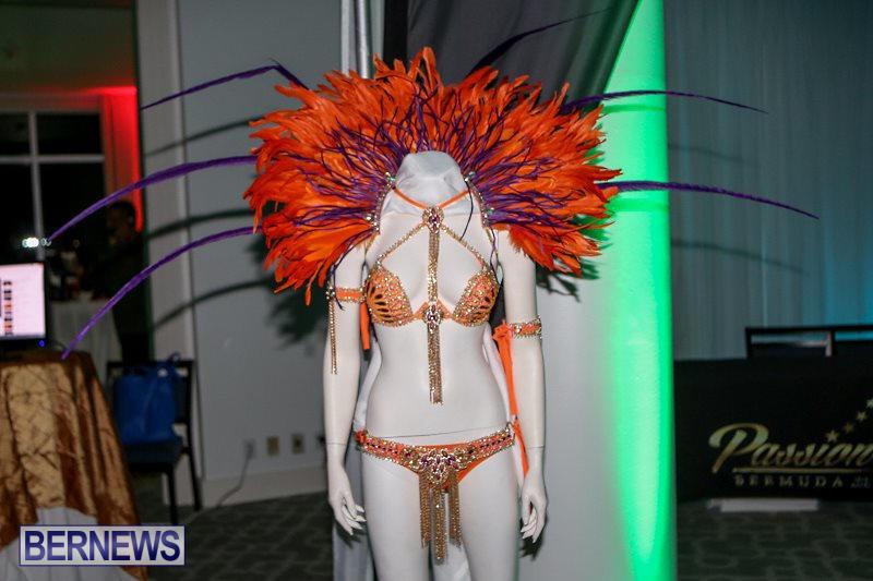 Bermuda-Heroes-Weekend-Launch-November-20-2015-3