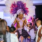 Bermuda Heroes Weekend Launch, November 20 2015-31