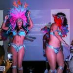Bermuda Heroes Weekend Launch, November 20 2015-42