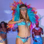 Bermuda Heroes Weekend Launch, November 20 2015-43