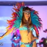 Bermuda Heroes Weekend Launch, November 20 2015-44