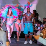 Bermuda Heroes Weekend Launch, November 20 2015-46