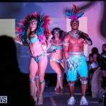 Bermuda Heroes Weekend Launch, November 20 2015-47