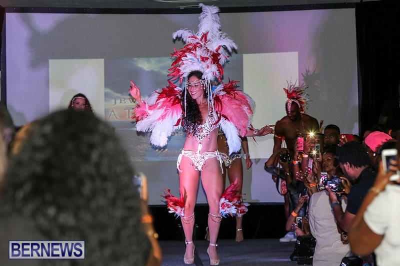 Bermuda-Heroes-Weekend-Launch-November-20-2015-49
