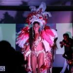 Bermuda Heroes Weekend Launch, November 20 2015-53