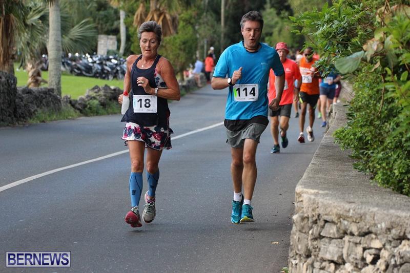 Bermuda-Road-Running-Nov-2015-10