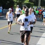 Bermuda Running Nov 11 2015 (11)