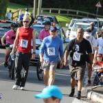 Bermuda Running Nov 11 2015 (19)