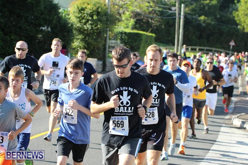 Bermuda-Running-Nov-11-2015-8