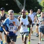 Bermuda Running Nov 11 2015 (9)