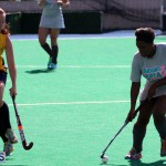 Budgies - Canaries Hockey Bermuda November 2015 (1)