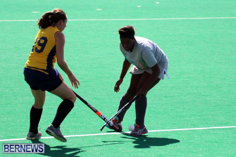 Budgies-Canaries-Hockey-Bermuda-November-2015-8