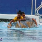 Cardboard Boat Challenge Bermuda, November 19 2015-62