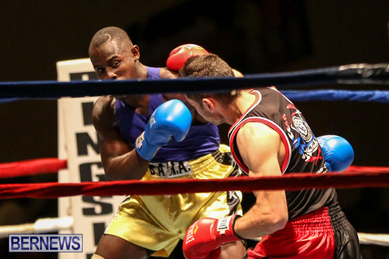 Daniel Avram vs Corey Boyce Boxing Match Bermuda, November 7 2015-2