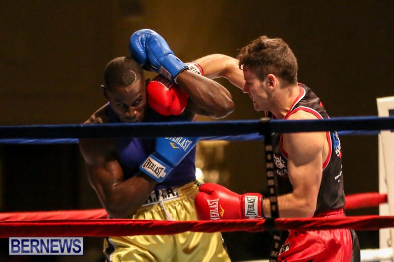 Daniel Avram vs Corey Boyce Boxing Match Bermuda, November 7 2015-8