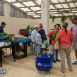 Farmers Market Bermuda, November 28 2015-43