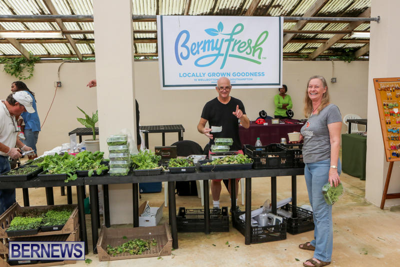 Farmers-Market-Bermuda-November-28-2015-44